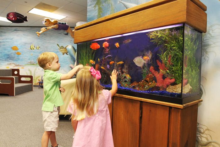 Kids at the Acquarium in the Pediatric Dentist Office in Houston, Memorial and The Heights, TX